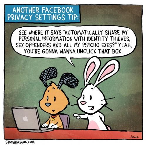 facebook_tipp_hase